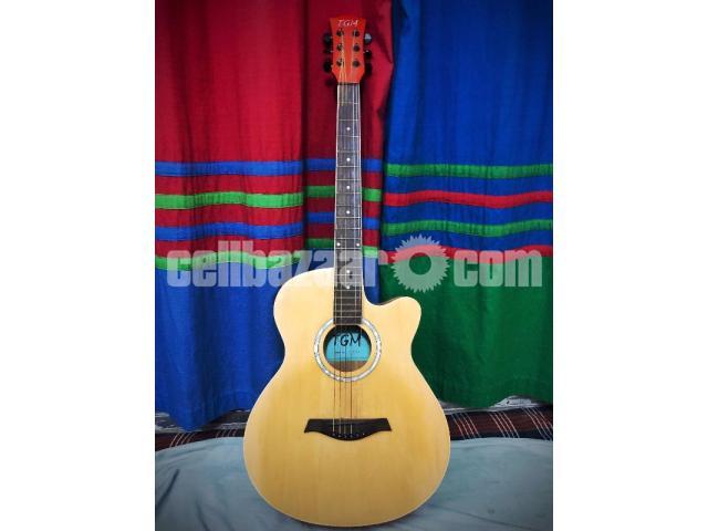 TGM Guitar - 1/1