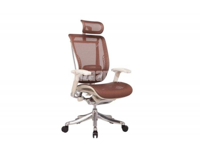 Ergonomic Chair ( Painless Seating Chair ) - 1/4