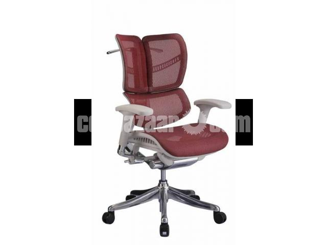 Ergonomic Chair ( Painless Seating Chair ) - 4/4