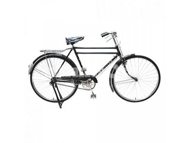 used phoenix bicycle sale - 1/1