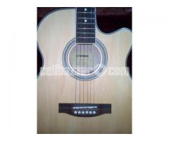 Acoustic Guitar (Yamaha)
