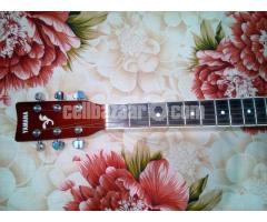 Acoustic Guitar (Yamaha) - Image 5/5