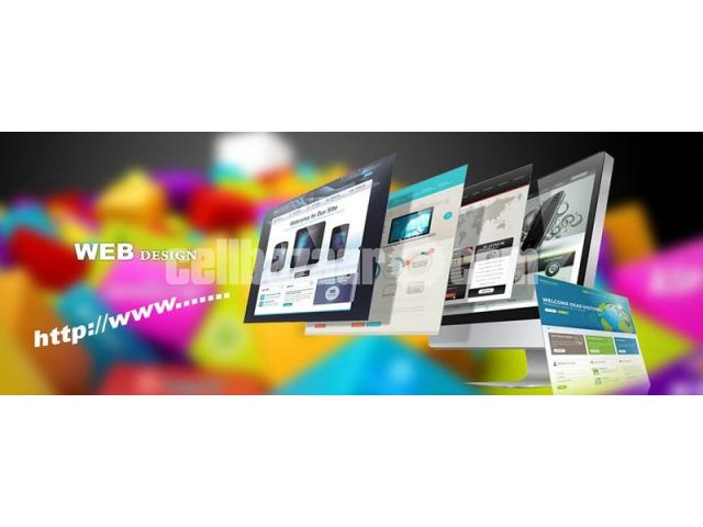 Are You Looking for Professional Web Design and Development Service? - 1/5