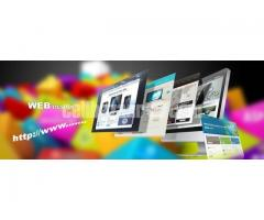 Are You Looking for Professional Web Design and Development Service?