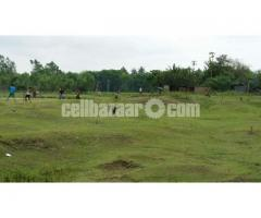 16 Acre land for sale by the owner