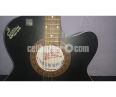 acoustic signature guitar
