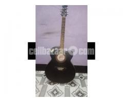 acoustic signature guitar