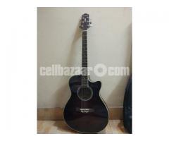 Custom Pure Acoustic Guitar