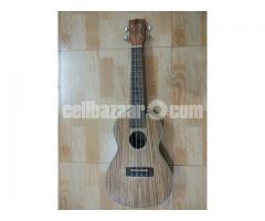Finlay Ukulele (Concert Size)