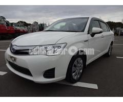 Axio Hybrid G-Ltd White 2013