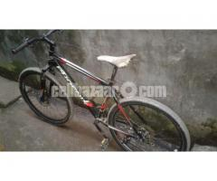 Phoenix cycle for sale