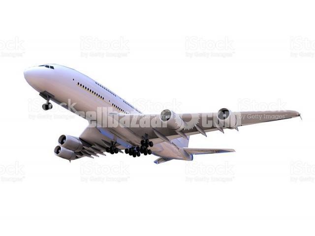 Dhaka to Auckland Flight Ticket - 1/1