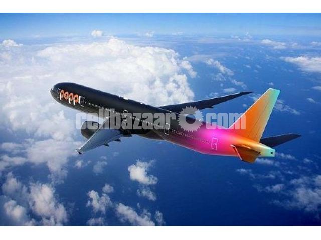 Dhaka to Bucharest Flight Ticket - 1/1