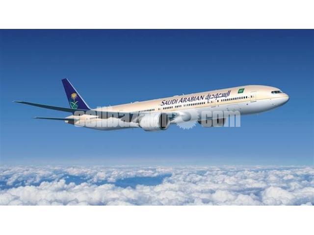 Dhaka to Abha Flight Ticket - 1/1