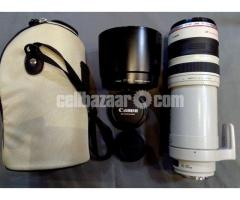 Canon EF 100-400mm f/4.5-5.6L IS Telephoto Zoom Lens
