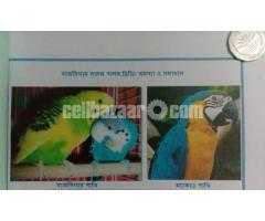 Budgerigar bird Breed & Treatment book