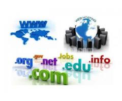 Domain & Hosting