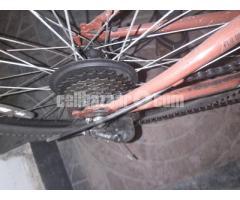 Duranta Bicyle 20 Days Used