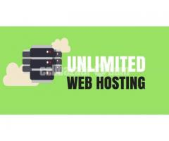 ☀️Unlimited SSD Hosting 70% OFF☀️