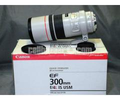 Canon EF 300mm f/4L IS USM Telephoto Prime Lens