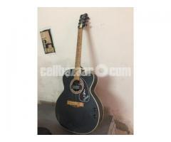 Hand Guitar