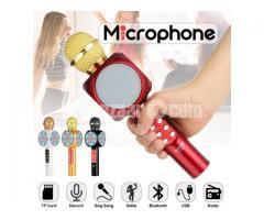 karaoke Bluetooth microphone WS-1816