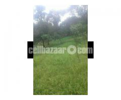 Land for sale @ Bhaluka , Mymensingh