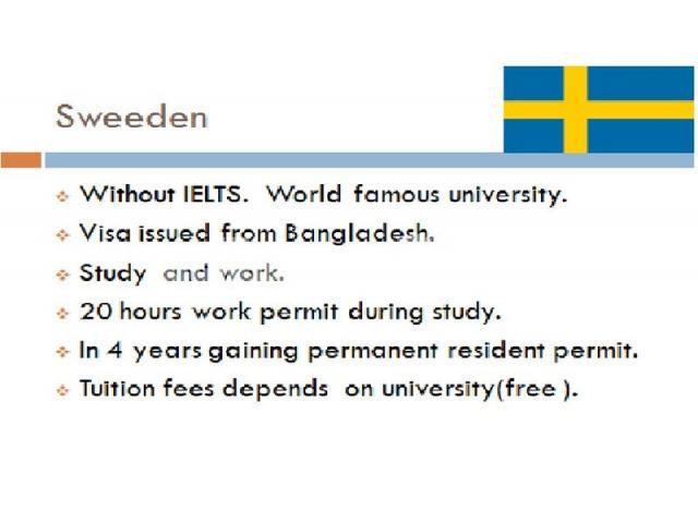 Sweeden visa - 2/4