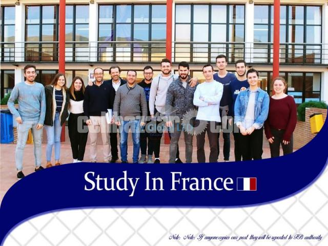 Study in France - 1/1