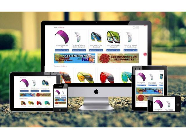 Website Design and Development - 1/3