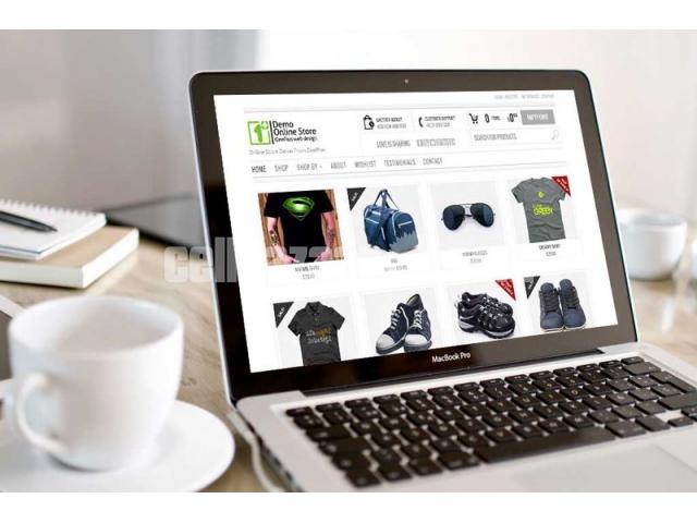 Website Design and Development - 2/3