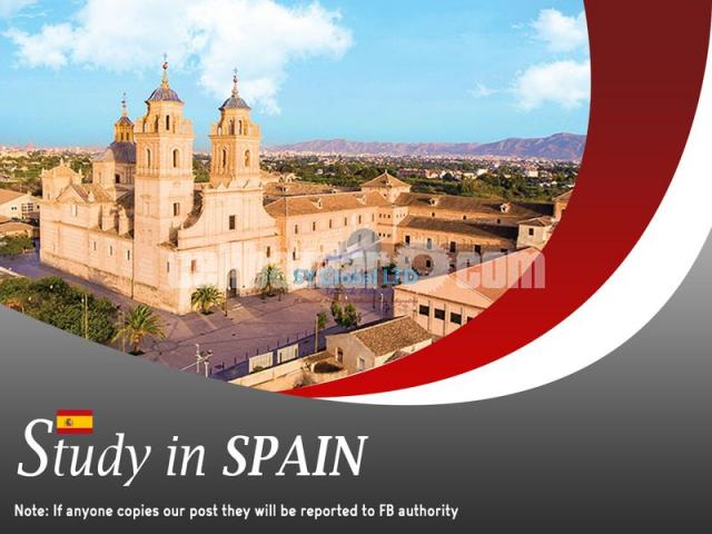 Study in Spain - 1/1