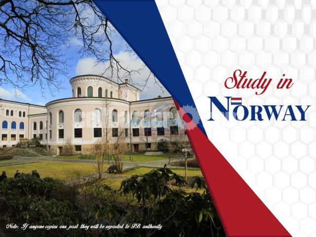 Study in Norway - 1/1