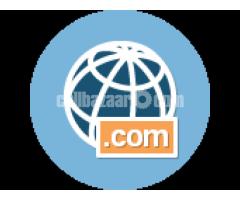 ১০ জিবি Pure SSD হোস্টিং; সাথে .COM ডোমেইন ফ্রী