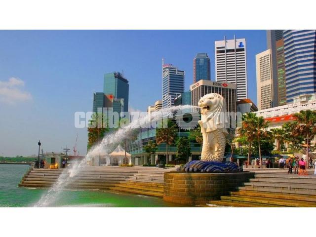 Visa Processing Singapore - 1/5