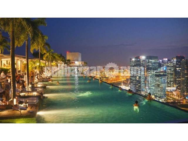 Visa Processing Singapore - 2/5
