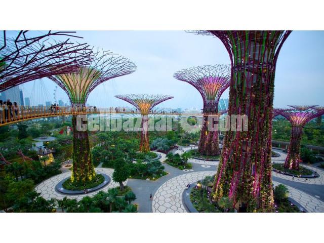 Visa Processing Singapore - 3/5