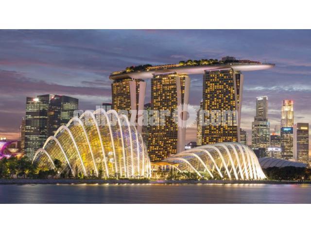 Visa Processing Singapore - 4/5