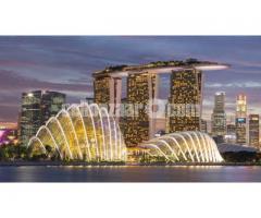 Visa Processing Singapore - Image 4/5