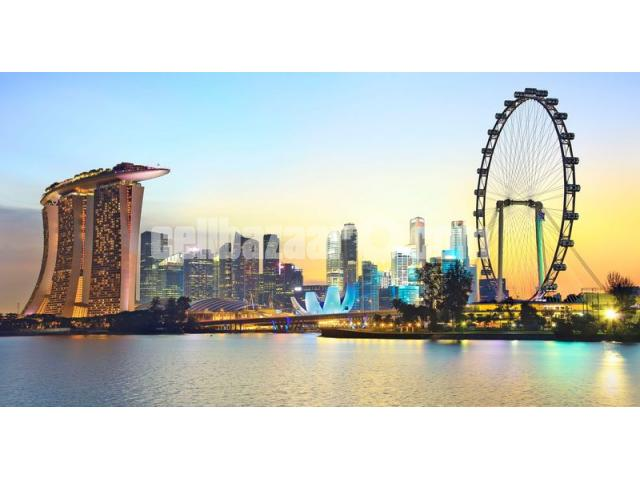 Visa Processing Singapore - 5/5