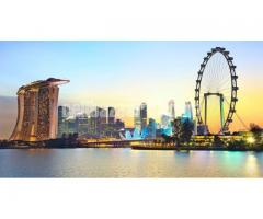 Visa Processing Singapore - Image 5/5