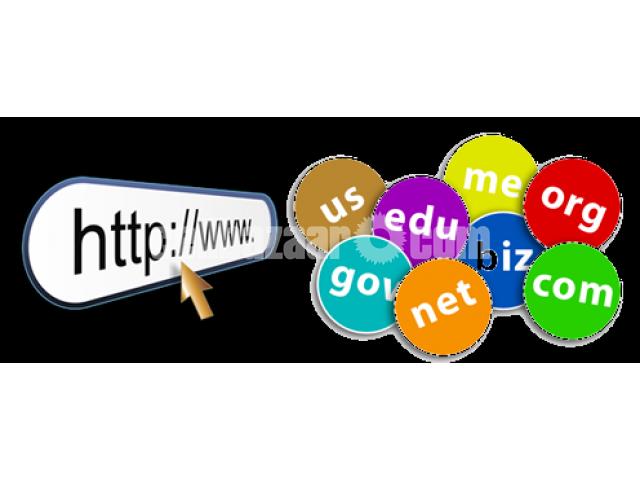 Domain Registration in Bangladesh – IT Nut Hosting - 1/1