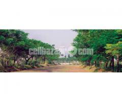 3 Katha Land, Ashulia