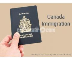 Immigration in Canada and study