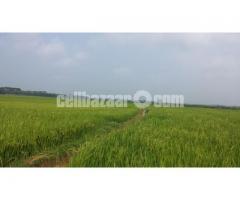 06 katha land sale-Faikir Darga Murapara, Rupganj, Narayanganj