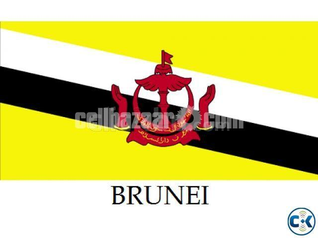 BRUNEI WORK PERMIT VISA GUARANTEE - 1/1