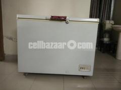 Used Deep Fridge 310 litre