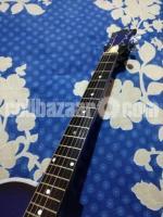 Acoustic guitar SMENG101