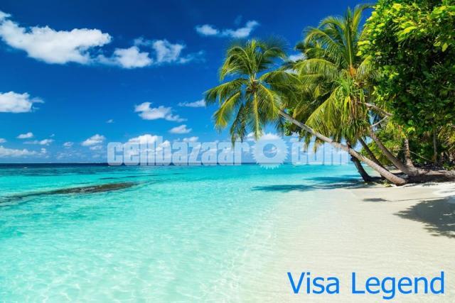 Travel Visa Process - 2/5