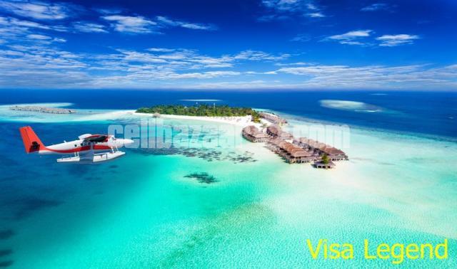 Travel Visa Process - 3/5